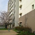 City Court Sone-Higashimachi Daini 3DK