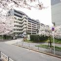 Sanbarie Higashinagai 1LDK