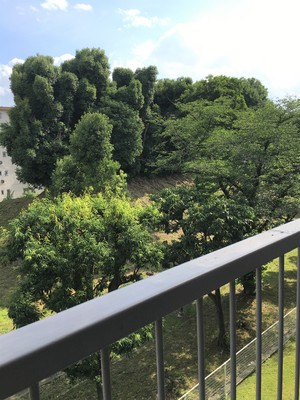 Garden 2: Nakamiya Daiyon